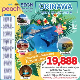 OKINAWA ซุปตาร์ ฮูลา ฮูล่า ภาค 8 5D3N
