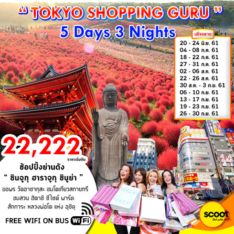 TOKYO SHOPPING GURU 5Days 3Nights