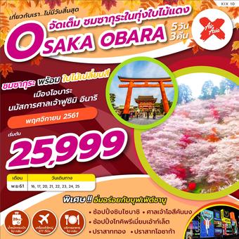 OSAKA OBARA จัดเต็ม ซากุระในทุ่งใบไม้แดง 5วัน 3คืน