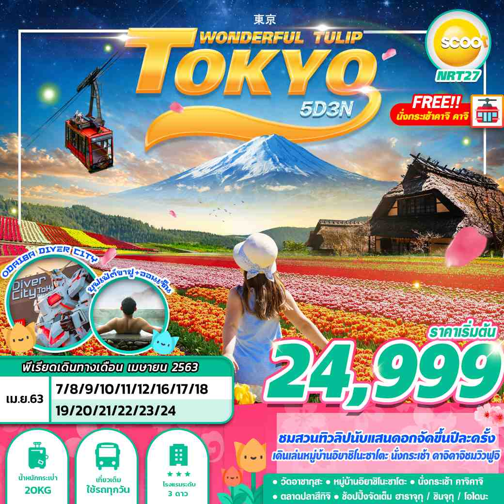 TOKYO WONDERFUL TULIP 5D3N