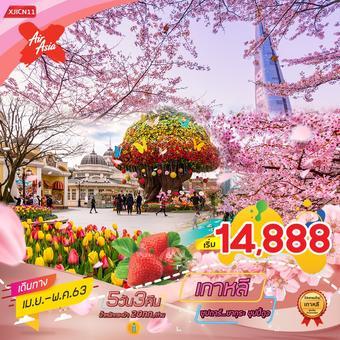 เกาหลี สวนสนุกเอเวอร์แลนด์ 5 วัน 3 คืน  ซุปตาร์...ซากุระ ชุปปี้ดูววว
