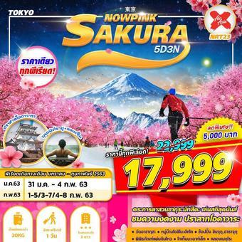 โตเกียวซากุระNRT23 XJ TOKYO SAKURA SNOWPINK 5D3N