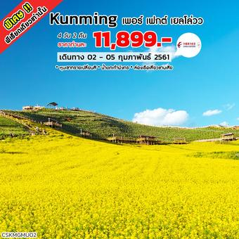 ทัวร์คุนหมิง Kunming เพอร์ เฟกต์ เยลโล่วว (MU)