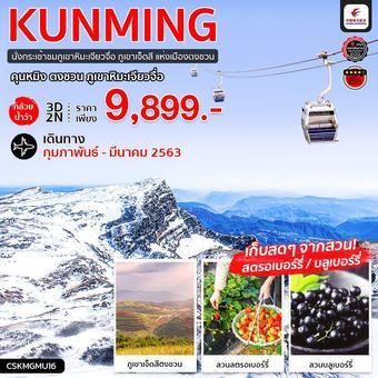ทัวร์จีน คุนหมิง กล้วยน้ำว้า ตงชวน ภูเขาหิมะเจียวจื่อ 3 วัน 2 คืน (MU)