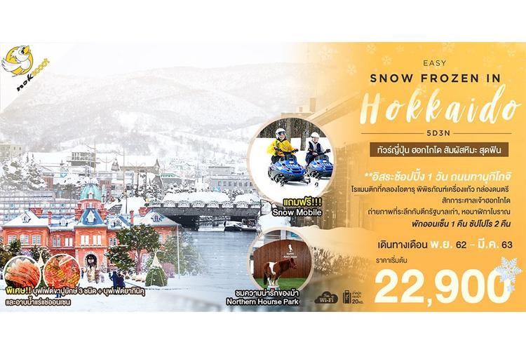 ทัวร์ญี่ปุ่น EASY SNOW FROZEN (FREEDAY) IN HOKKAIDO 5D3N