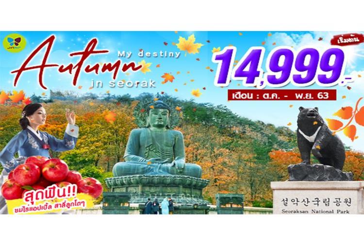 ทัวร์เกาหลี MY DESTINY AUTUMN IN SEORAK 5วัน 3คืน (LJ)