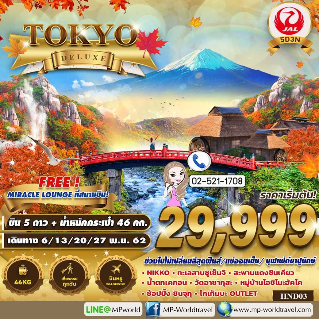 ทัวร์ญี่ปุ่น HND03 JL TOKYO  DELUXE NOV 19 5D 3N JL