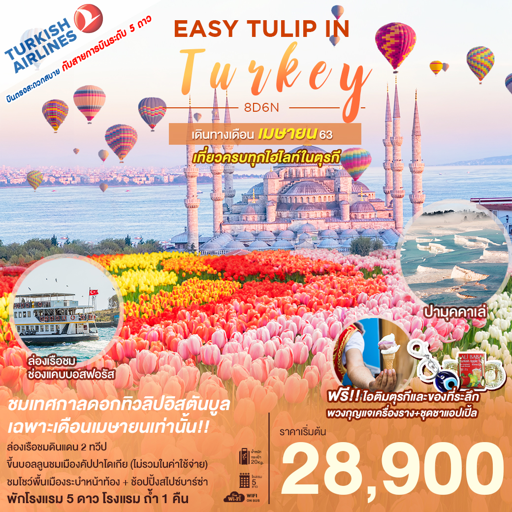 🌷🇹🇷EASY TULIP IN TURKEY APRIL 2020🌷🇹🇷