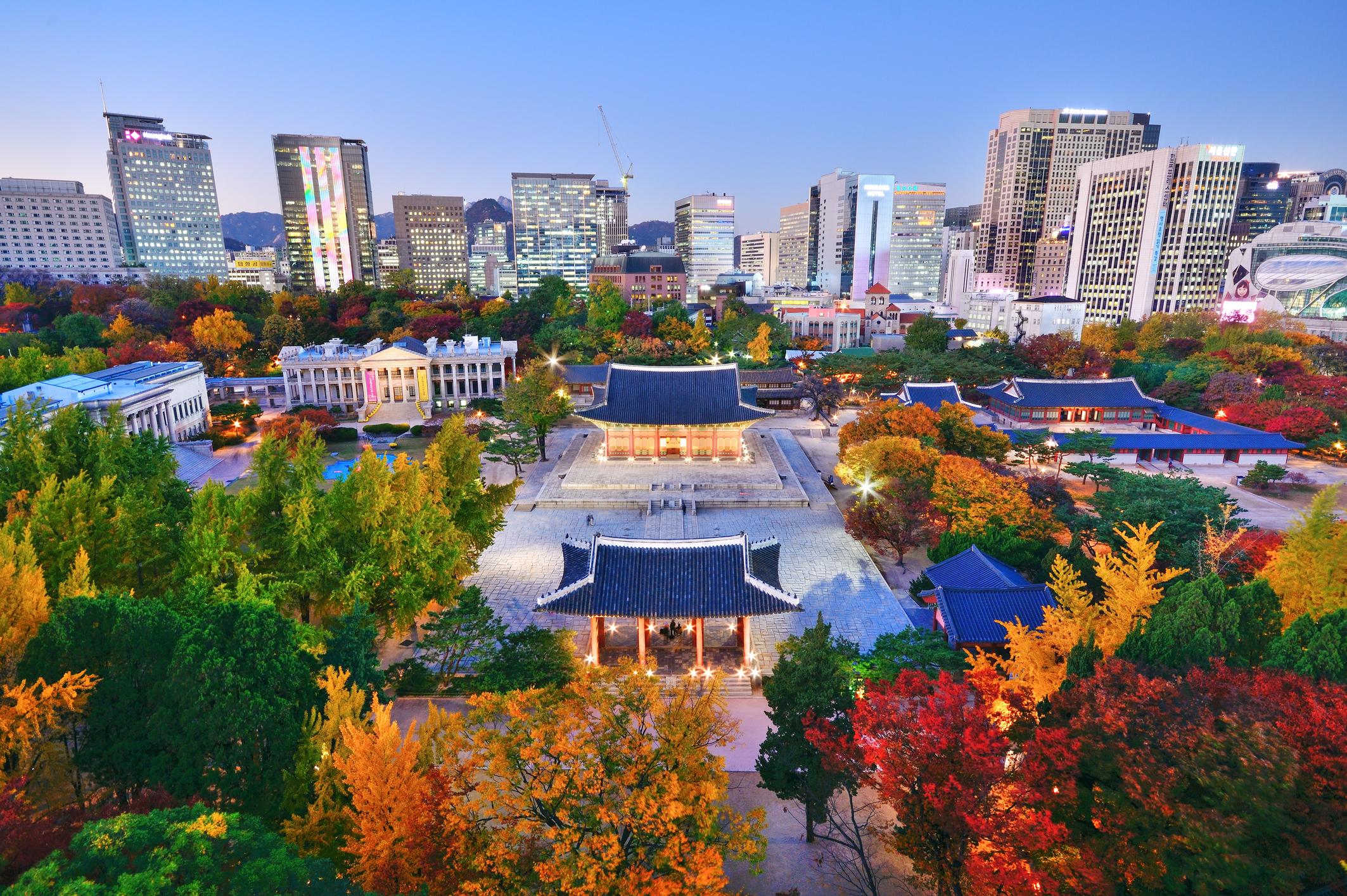 ทัวร์เกาหลี โซล อาซาน ถนนอุโมงค์แป๊ะก๊วย สวนยางจูนาริ