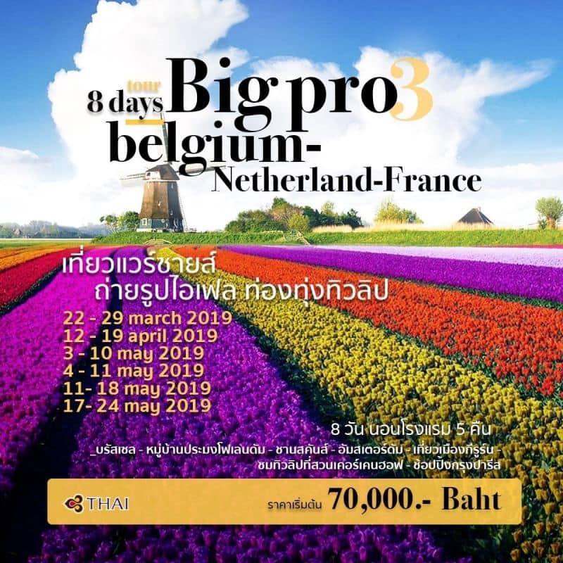 "BIG PRO 3_Wonder of the North (Tulip) ""Belgium-Netherland-France 8 Days"""