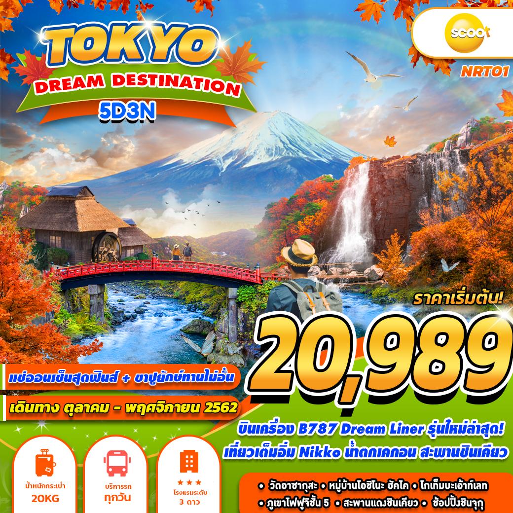 NRT01 TR TOKYO DREAM DESTINATION 5D3N (OCT-NOV)