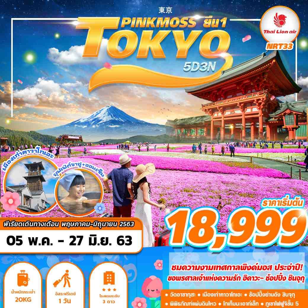 ทัวร์ญี่ปุ่น TOKYO PINKMOSS ยืน1 5D3N (MAY-JUN)