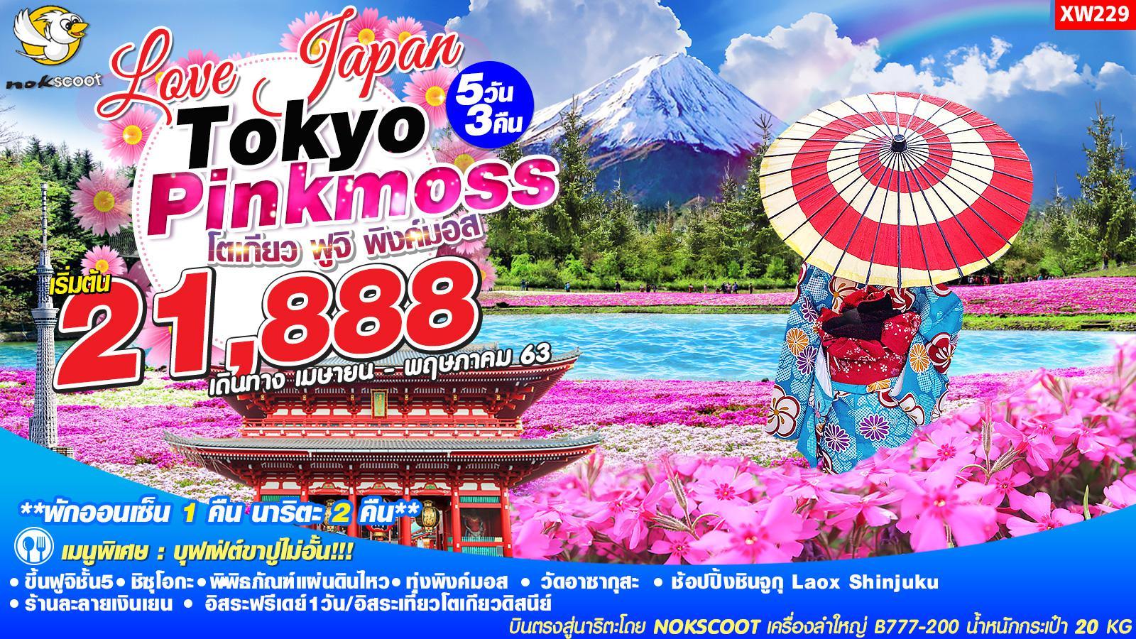 ทัวร์ญี่ปุ่น Love Japan โตเกียว ฟูจิ พิงค์มอส 5D3N