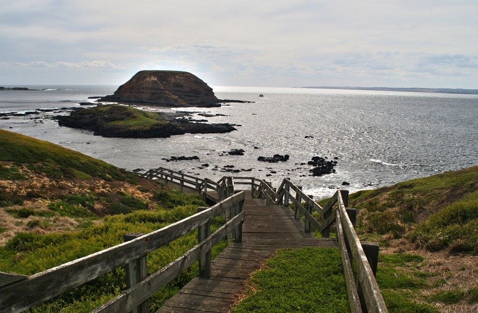 ทัวร์ออสเตรเลีย เมลเบิร์น เกรทโดอเชี่ยนโร้ท เกาะฟิลลิป 5 วัน 3 คืน