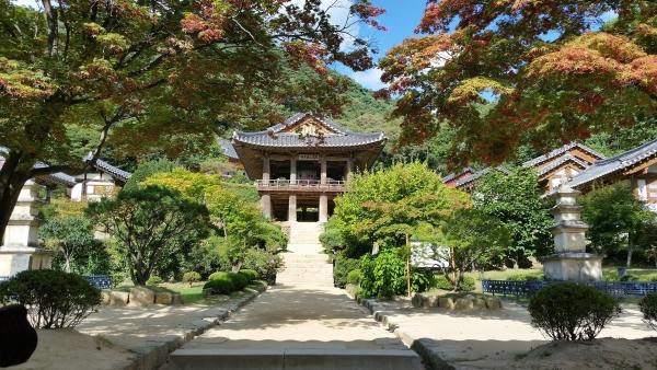 ทัวร์เกาหลี GO2ICN-TW006 เกาหลี Beautiful Autumn in seoul 5วัน 3คืน โดยสายการบินทีเวย์ (TW)
