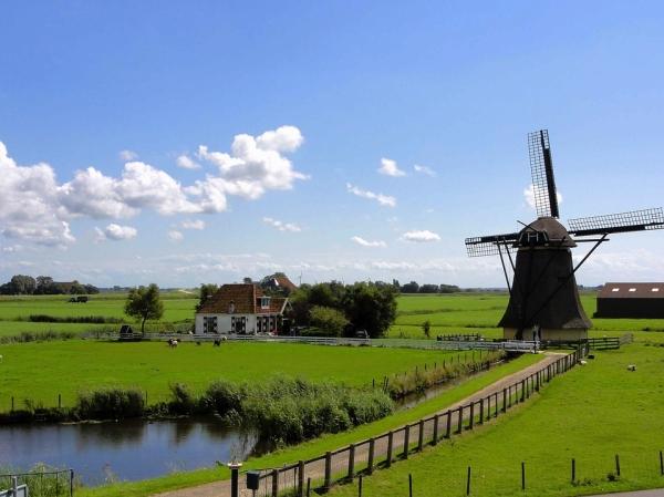 TULIP FEST (NETHERLANDS-BELGIUM) 7D / BR (AMS-AMS)